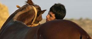 آتلان آتلان؛ یک مرد، یک اسب ،یک قلب آتلان؛ یک مرد، یک اسب ،یک قلب 15 9 26 192018tn DSC 0068 2