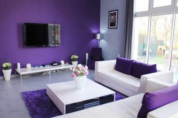 نکات مهم در ترکیب رنگ بندی دکوراسیون منزل نکات مهم در ترکیب رنگ بندی دکوراسیون منزل 6357402299739606681