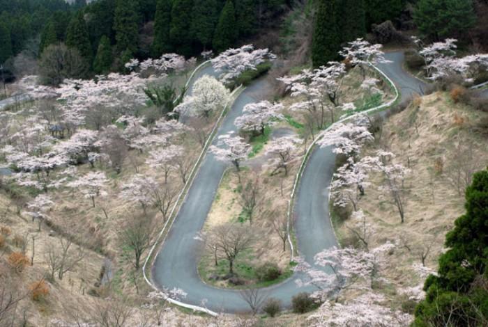 کوه فوجی ژاپن هیجان انگیزترین مسیرهای رانندگی در سراسر دنیا هیجان انگیزترین مسیرهای رانندگی در سراسر دنیا 9 Touge Roads