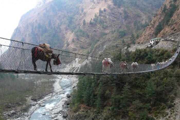 پل گاسا ۱۰ پل که عبور از آنها لرزه به اندامتان میاندازد ۱۰ پل که عبور از آنها لرزه به اندامتان میاندازد Hanging Bridge of Ghasa Nepal 1