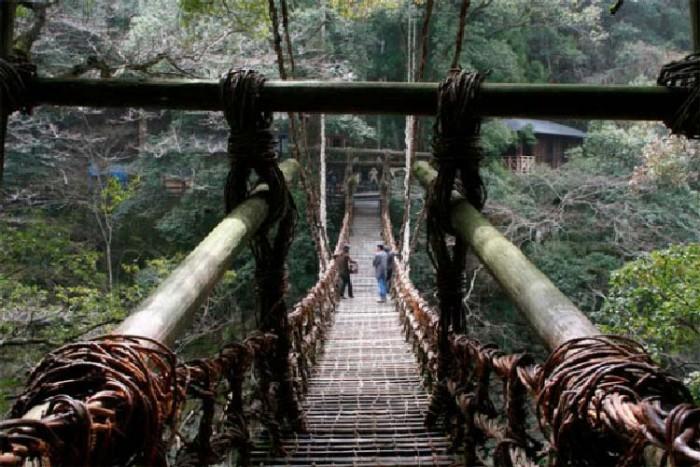 پل ژاپن ۱۰ پل که عبور از آنها لرزه به اندامتان میاندازد ۱۰ پل که عبور از آنها لرزه به اندامتان میاندازد Musou Tsuribashi bridge Japan
