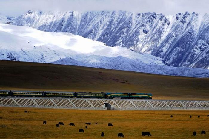 Qingzang_railway_Train_01 ۱۰ ایستگاه قطار زیبای جهان ۱۰ ایستگاه قطار زیبای جهان Qingzang railway Train 01