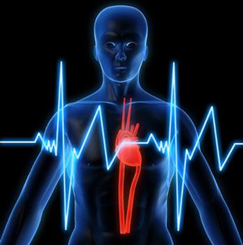 he3938 درمانی برای تپش قلب درمانی برای تپش قلب he3938